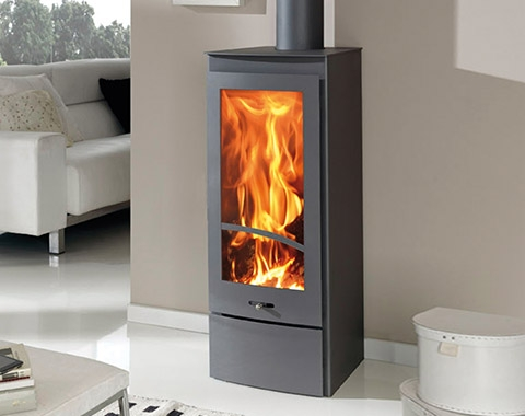 Cast Iron Stoves Kiev 10kw Contemporary Wood Burning Stove